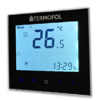 termoregulator.png